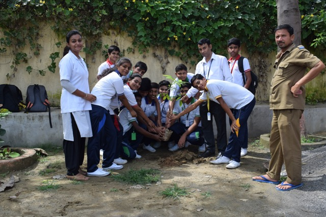 Students and Teachers planting trees in school campus